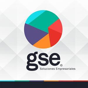Bolsa de trabajo GSE