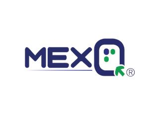 Bolsa de trabajo MEXQ