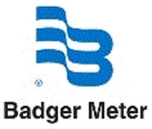 Bolsa de trabajo Badger Meter de México SA de CV