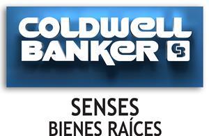 Bolsa de trabajo Coldwell Banker Senses