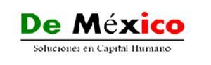Bolsa de trabajo De México Soluciones en capital humano